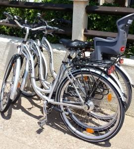 Vélos Luxe selle super confort pneus renforcés shimano nexus 7 vitesses cadre aluminium